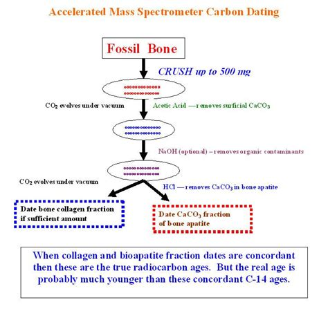 Is carbon dating really accurate jpg 748x731